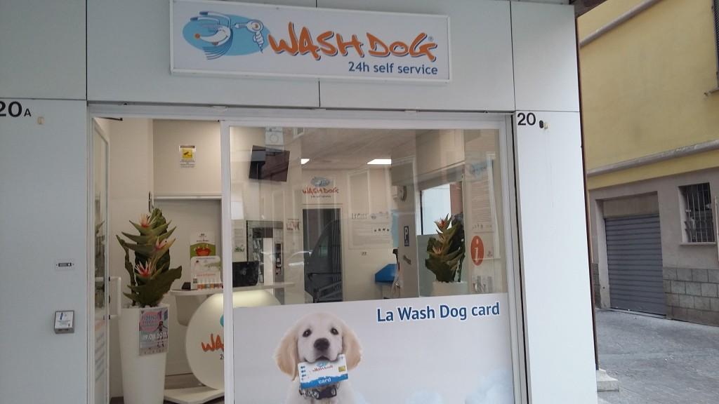 Wash Dog Fidenza